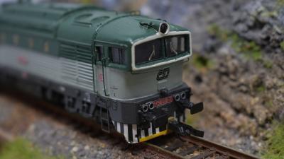 DSC 0456