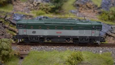 DSC 0455