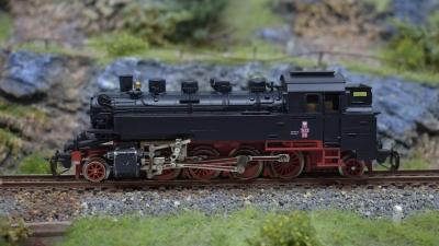 DSC 0517